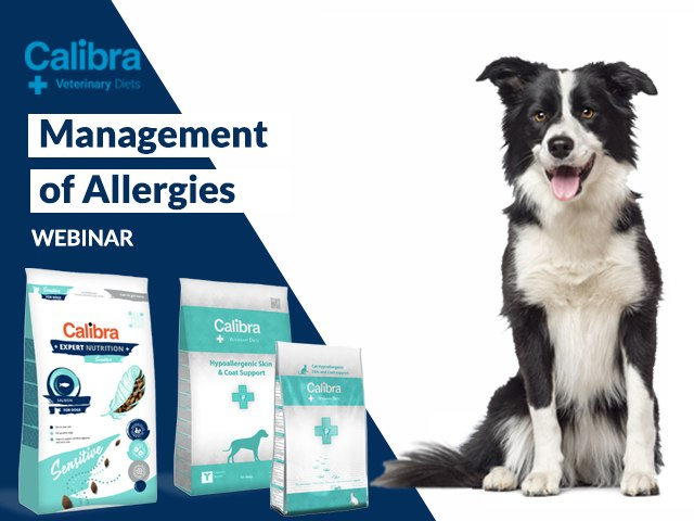 Management of Allergies