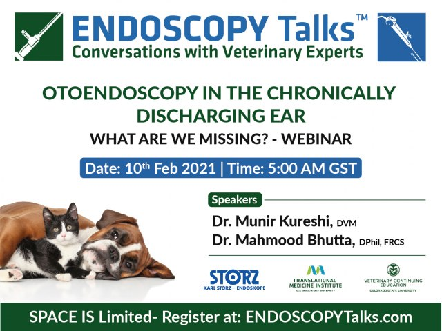 Otoendoscopy in the chronically discharging ear - Webinar