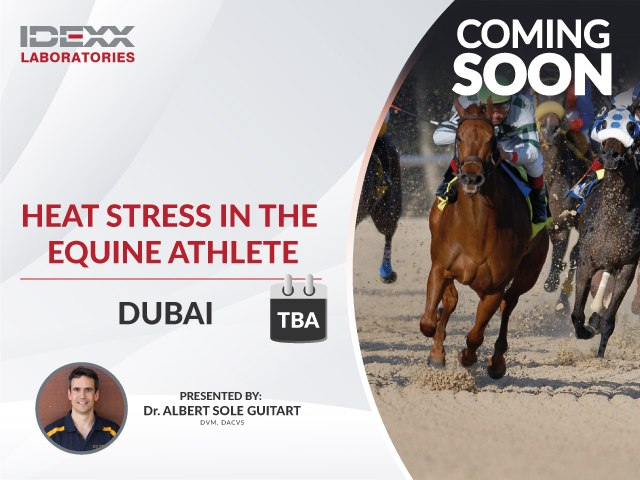 Heat stress in the equine athlete