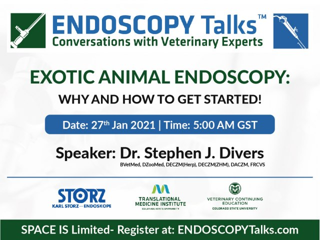 Exotic animal endoscopy: why and how to get started!