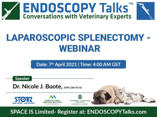 Laparoscopic splenectomy - webinar