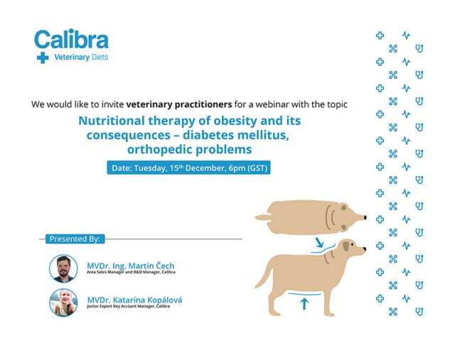 Nutritional therapy of obesity and its consequences