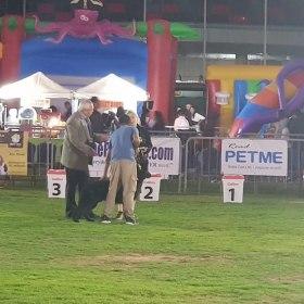Yas Pet Festival 2020