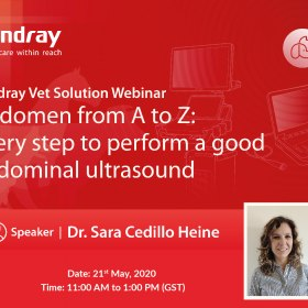 Mindray Vet Solution Webinar- Abdomen from A to Z every step to perform a good abdominal ultrasound.