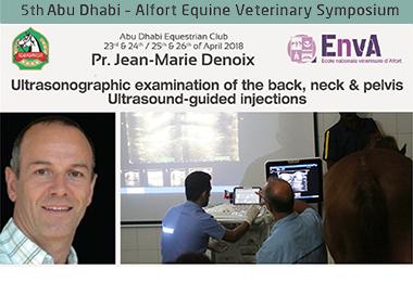 5th Abu Dhabi - Alfort Equine Veterinary Symposium