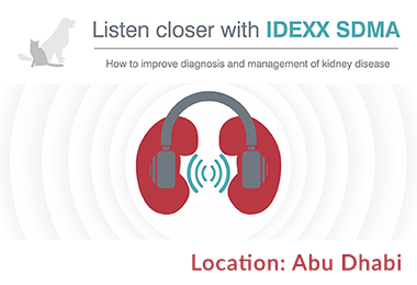 How to improve diagnosis and management of kidney disease