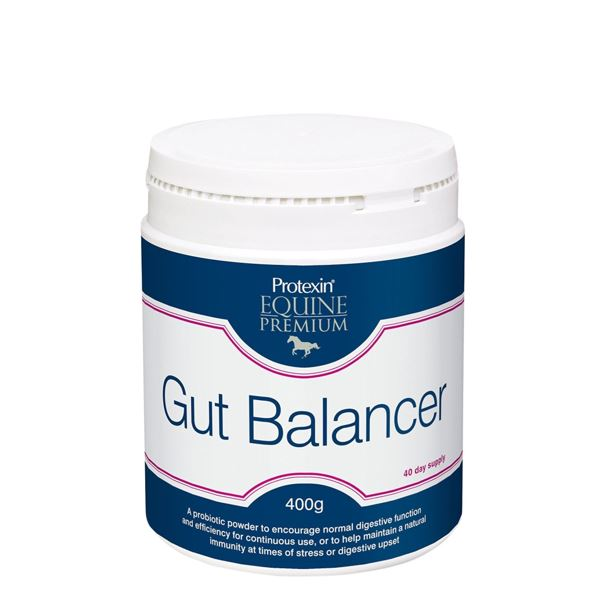 Equine Gut Balancer 400g