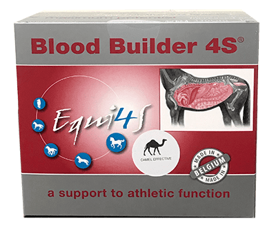 Blood Builder Sachets 12x30g
